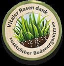 Vitaler Rasen dank zusätzlicher Bodenorganismen