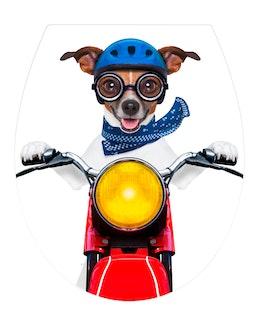 WENKO WC-Sitz Biker Dog Acryl integrierte Easy-Close Absenkautomatik