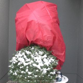 Noor Wintervlies 34G/M²