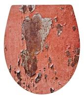 Sanitop WC-Sitz Dekor DP  Metal Rust SSK