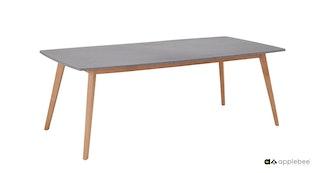 apple bee Esstisch 220 x 100 cm LOMBOK Gestell Teak-Tischplatte Leichtbeton grau