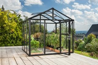 Vitavia Gewächshaus Zeus 6200 inkl. 2 Dachfenstern - 6,2 m²