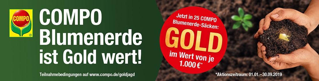 https://assets.koempf24.de/Goldaktion_banner.jpg?auto=format&fit=max&h=800&q=75&w=1110&s=704883f557c9e6ed680e418c37f26151