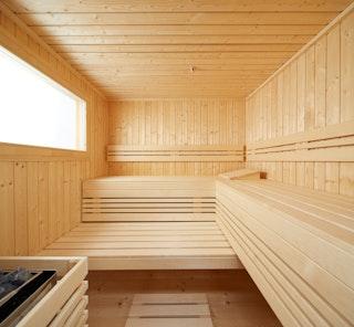 Infraworld Saunafenster, 104 x 54 cm, feststehend, Standardausführung