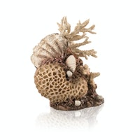 biOrb Korallen-Muschel Ornament natural (48360)