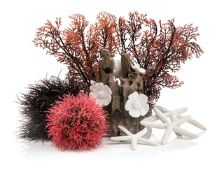 biOrb Decor Set 15L Red Forest (48442)