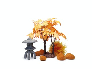 biOrb Decor Set 30L Herbst (55027)