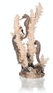 biOrb Seepferdchen natur M (55039)