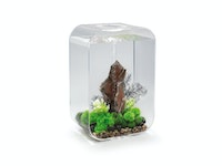 biOrb LIFE 60 MCR transparent (72059)