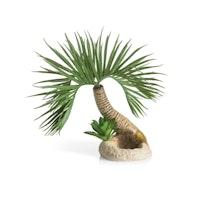 biOrb Palme Seychellen S (72679)