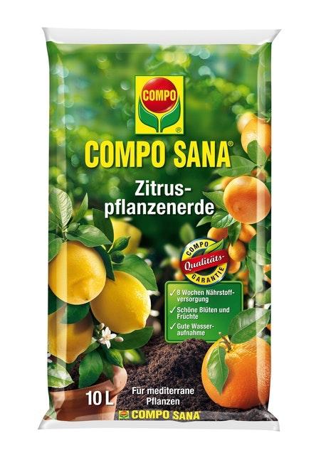 COMPO SANA Zitruspflanzenerde