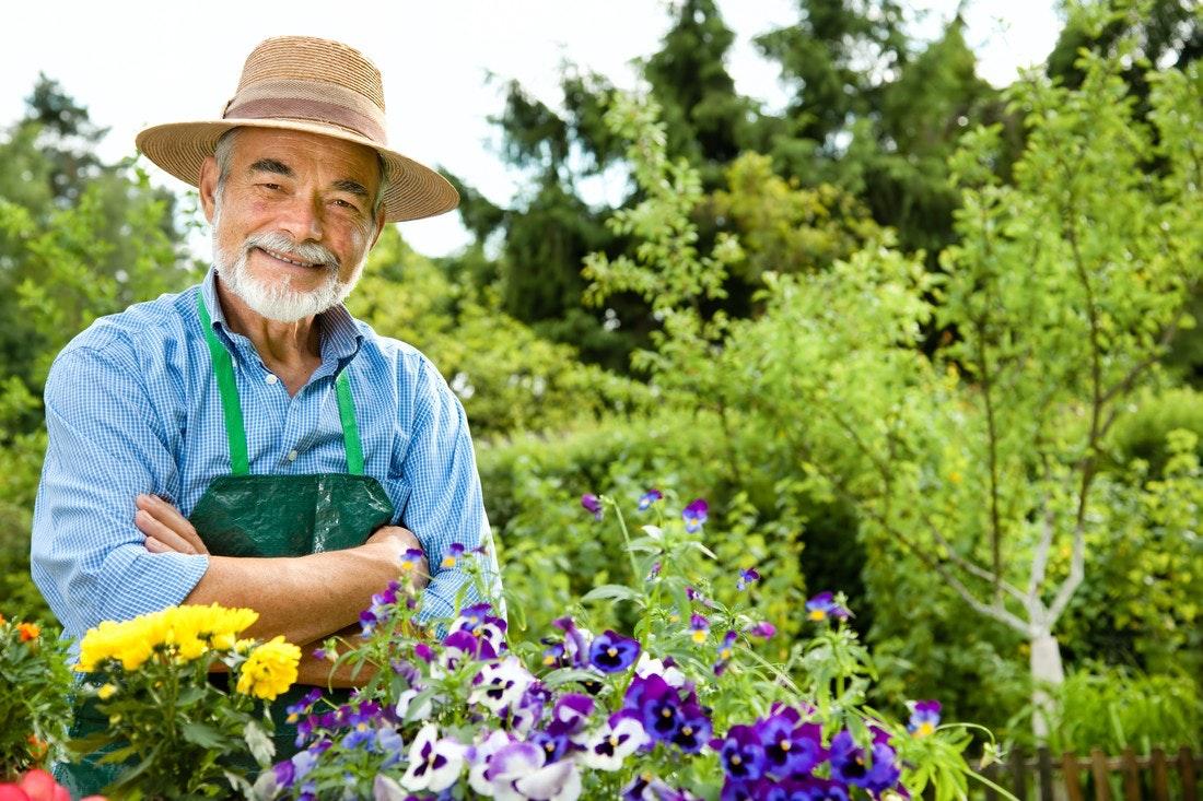 Gärtner im Garten mit bunten Blumen