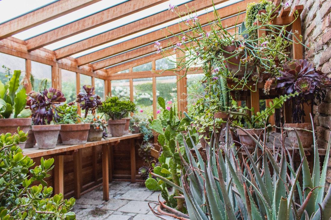 Ein kleines Sukkulentenhaus ist ein Traum für viele Hobbygärtner und Züchter