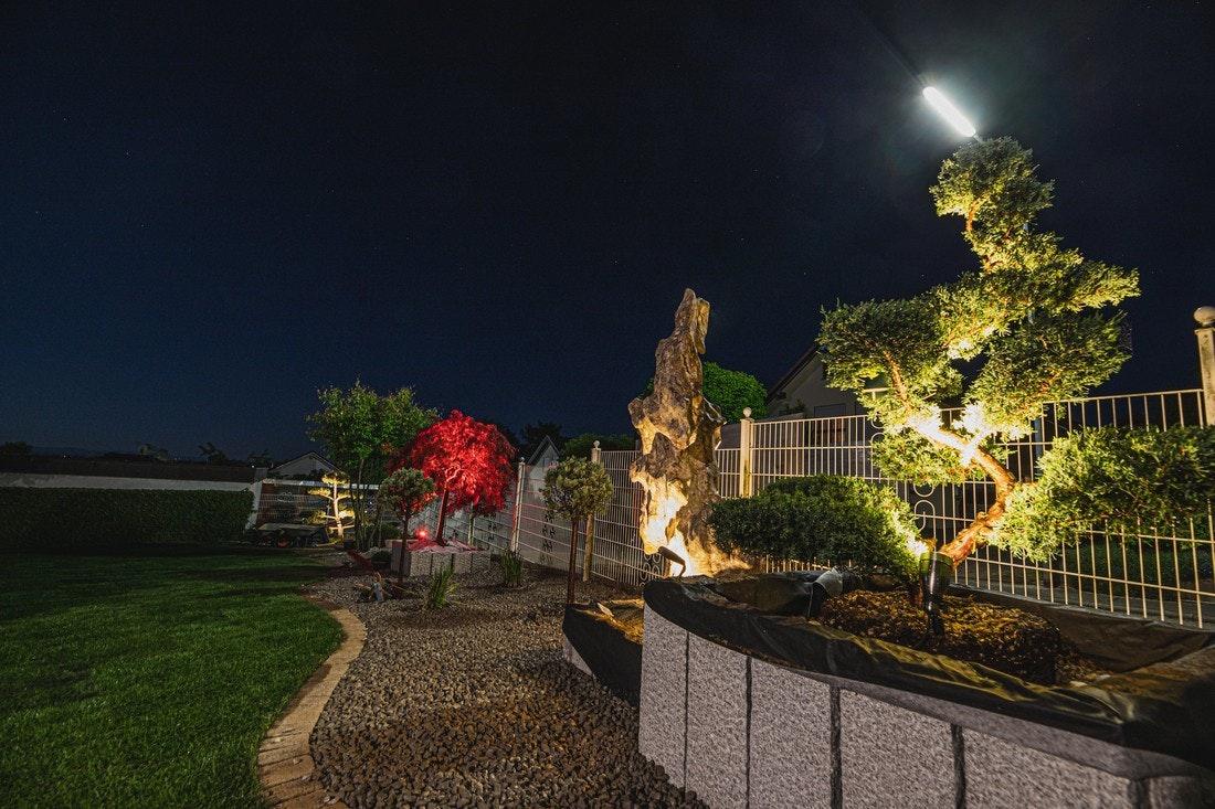 Mehrere Spotlights setzen einzelne Pflanzen und Skulpturen in Szene