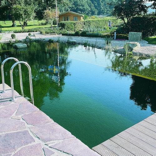 Schritt für Schritt zum Schwimmteich