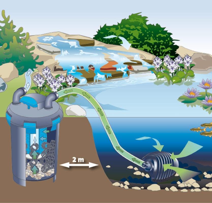 Funktionsweise eines Teichfilter-Sets in schemenhafter Skizze erklärt.