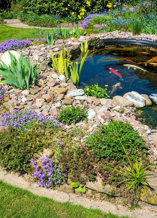 Der Frühling kommt: Teich wieder fit machen!