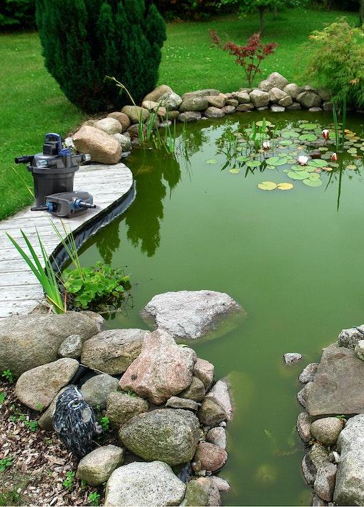 Welches Filtersystem für welchen Gartenteich?
