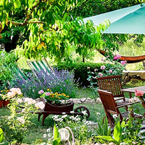 Was wann zu tun ist: Das Gartenjahr kompakt