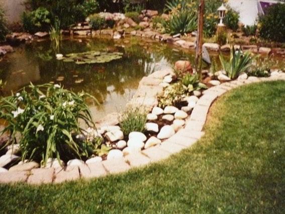 Der Gartenteich kurz nach seiner Fertigstellung 1989