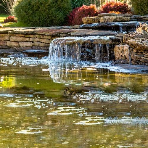 Teichgestaltung - Teich bepflanzen & dekorieren