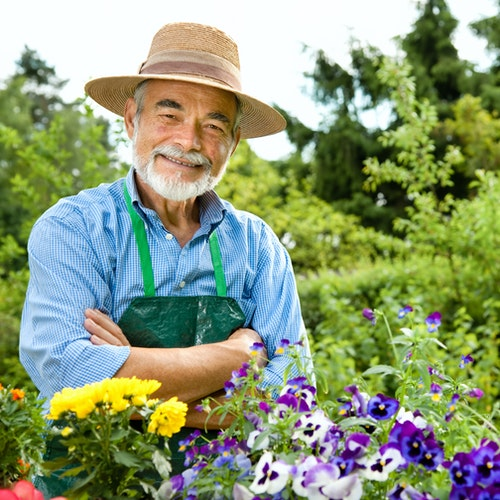 Mit der richtigen Pflege zum perfekten Rasen
