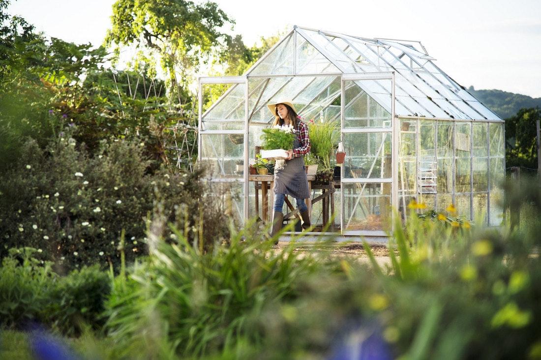 Mit dem klassischen gewächshaus im Garten machen Sie garantiert nichts falsch. Sie können vielfältig genutzt werden, zur Pflanzen- und Gemüsezucht oder auch als Wintergarten