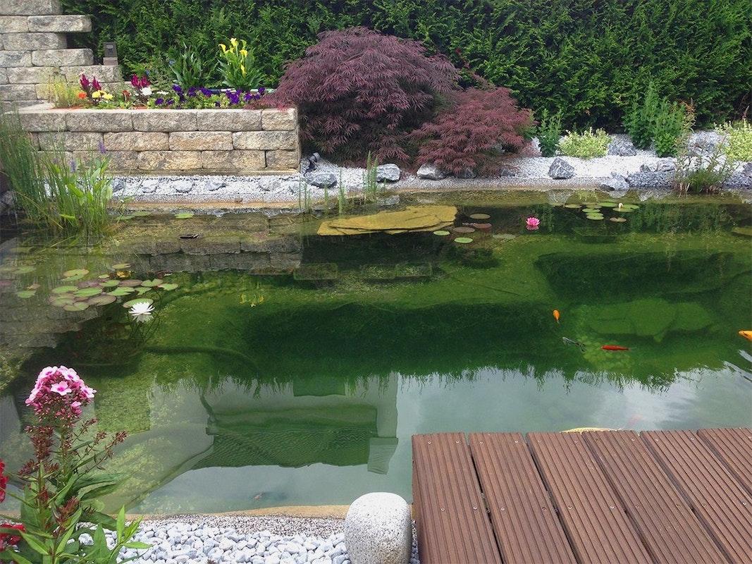 Etwas Neues genug Teich selbst bauen - Teichbauanleitung für Jedermann | Oase &RM_83
