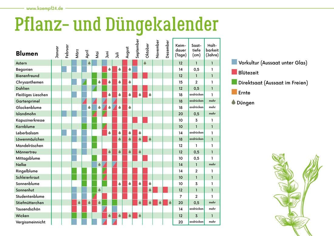 Pflanz- und Düngekalender für Blumen und Pflanzen