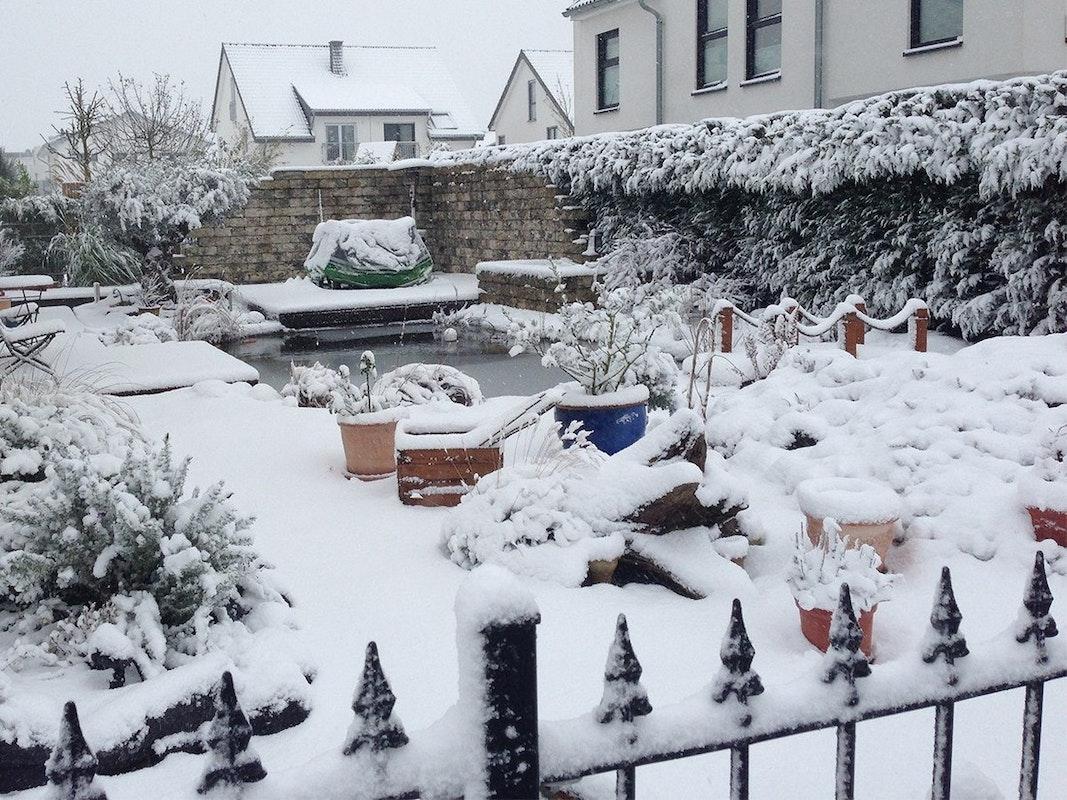 Garten im Winter mit Schneedecke
