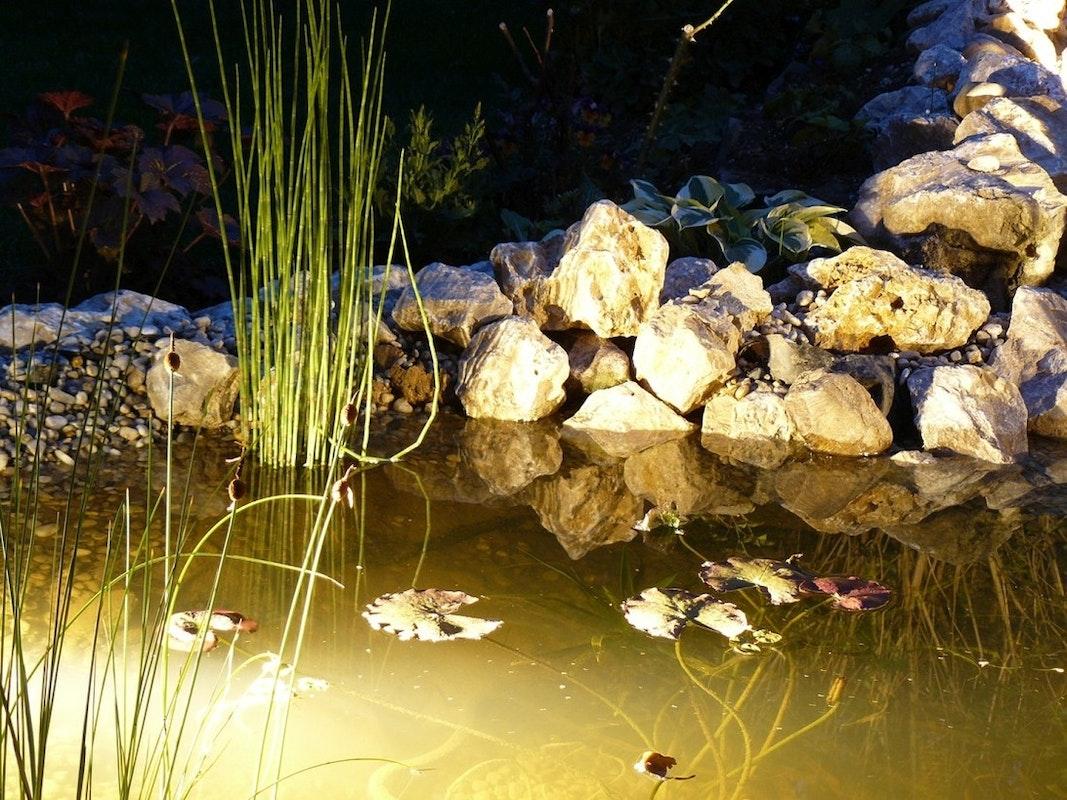 Teich bei Nacht leuchtet durch Beleuchtung unter und über Wasser.