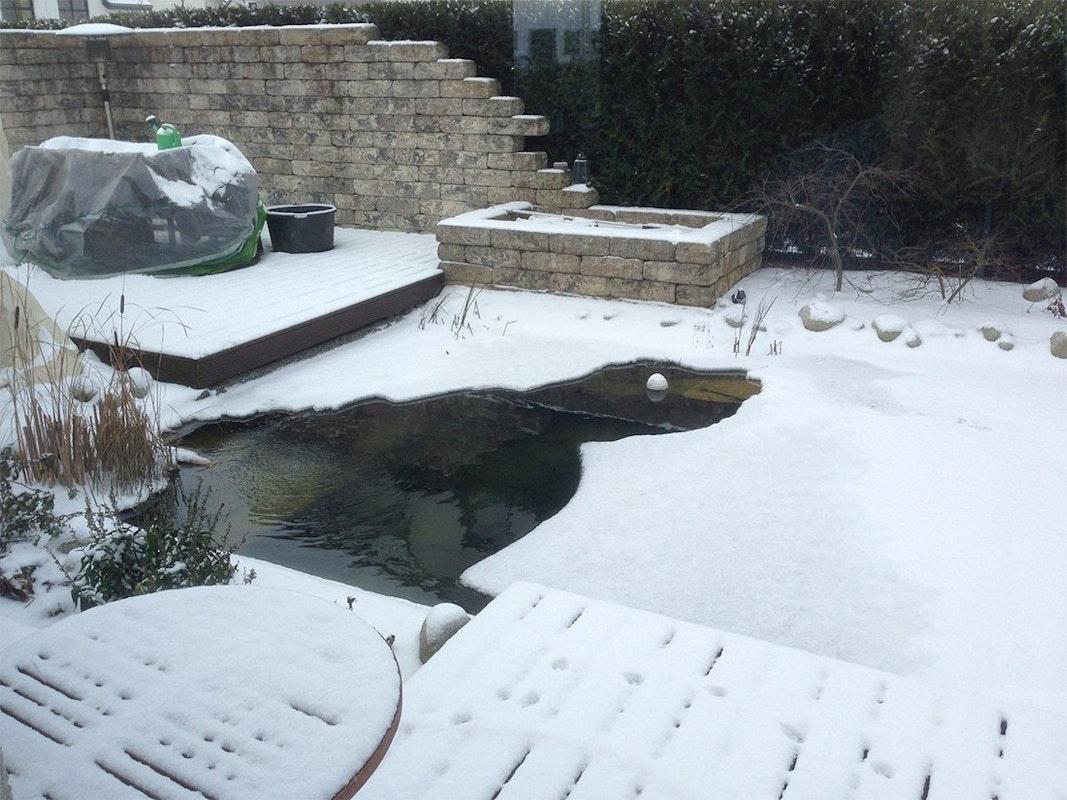 Teich zugefroren mit offener Stelle