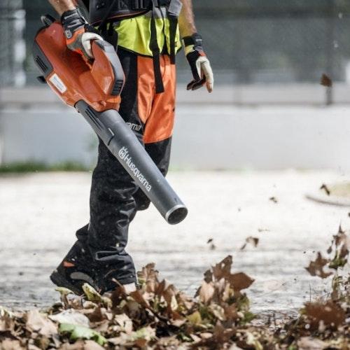 Wichtig im Herbst: Das Laub im Garten entfernen!