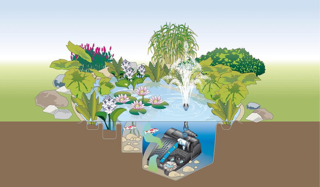 Schemenhafte Zeichnung der Funktionsweise eines UVC-Vorklärgerätes im Teich.
