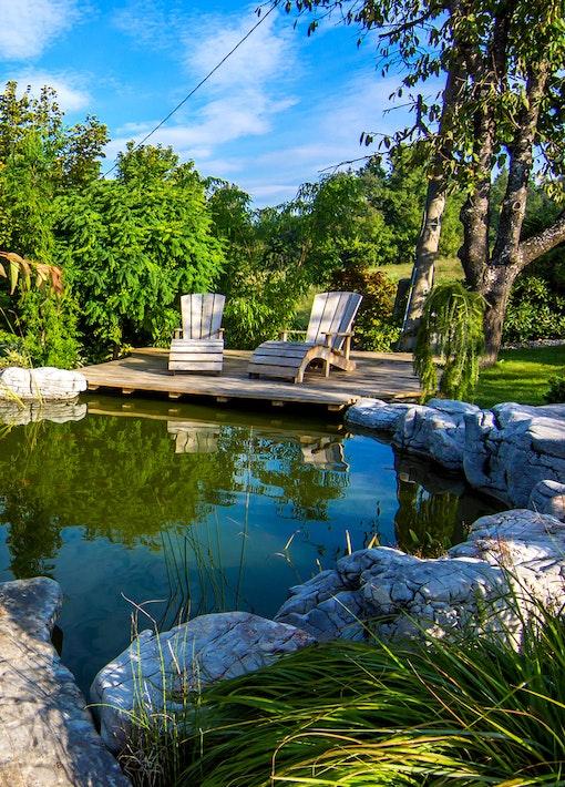 Den Teich schützen - die Teichpflege im Sommer!