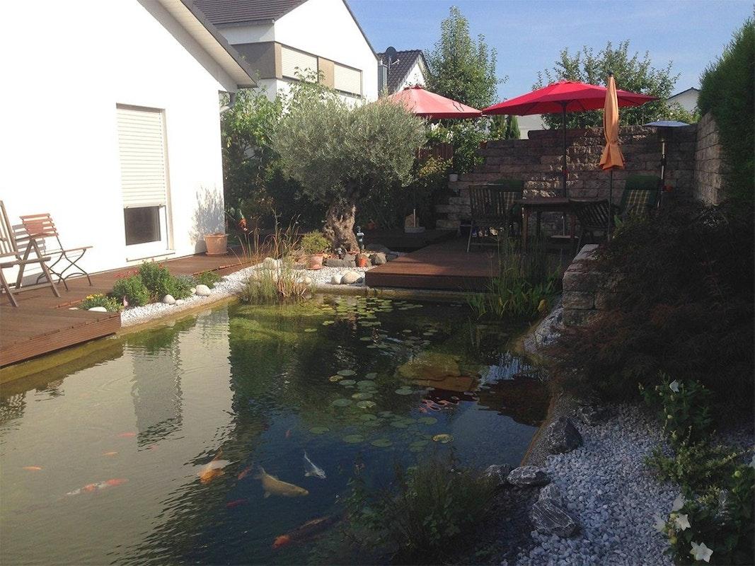 Teich mit Blick aufs Wohnhaus
