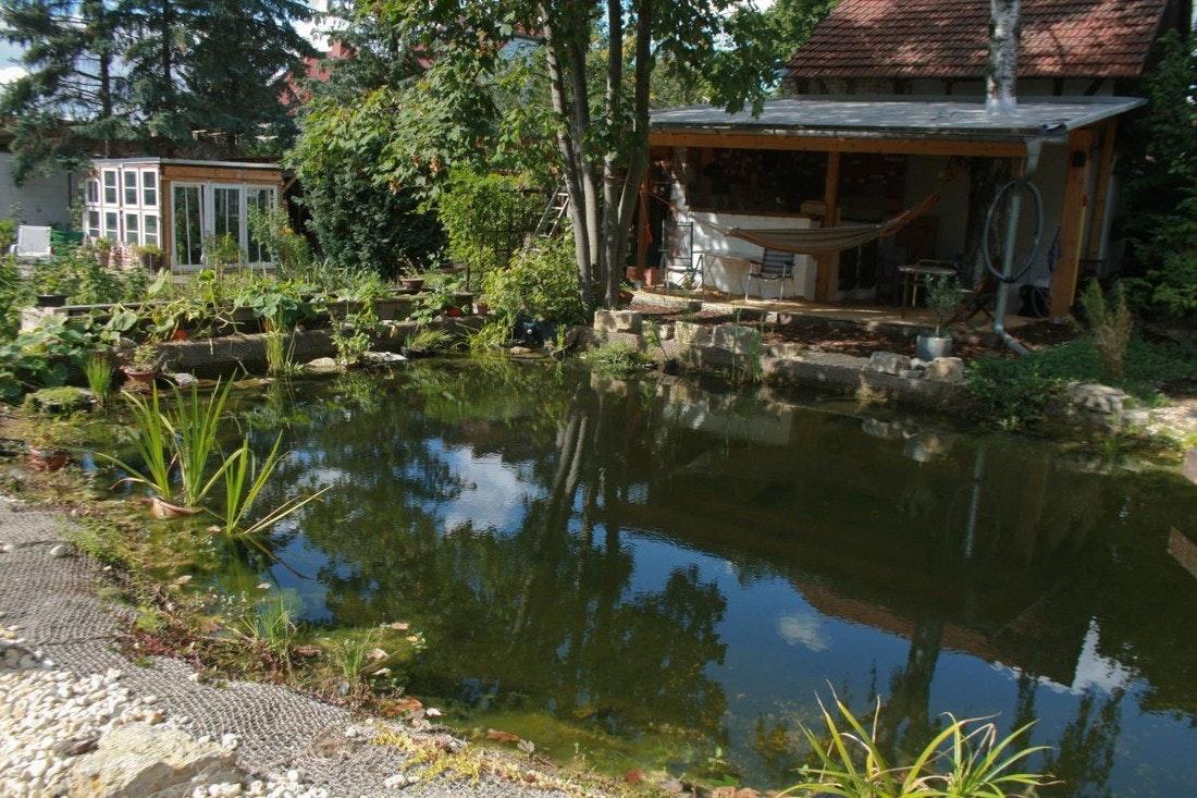 Teich und Blick auf die Hütte mit Bar