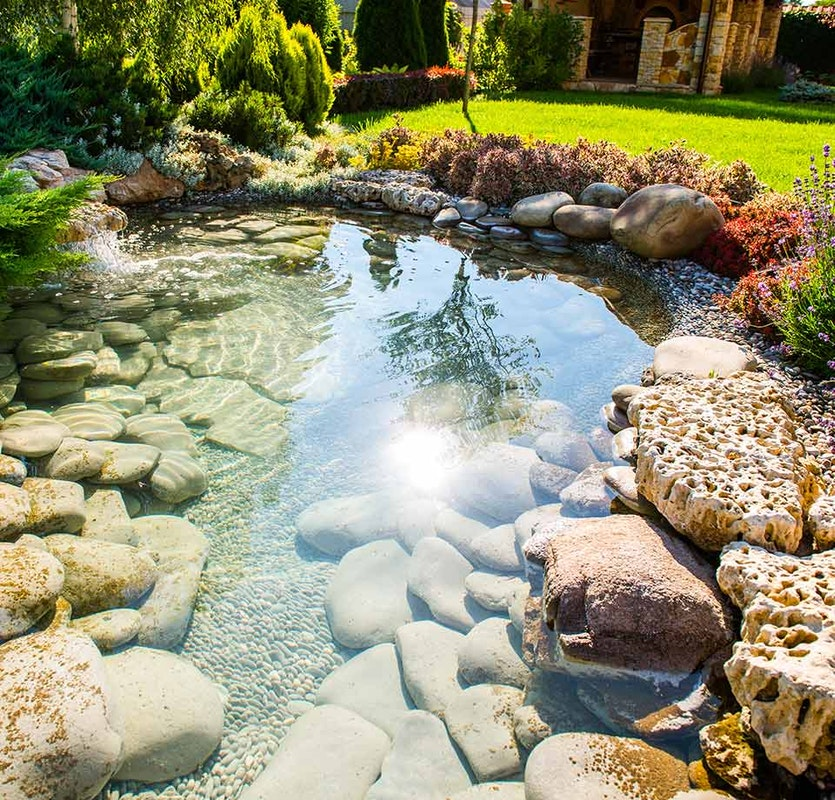 Das gereinigte Teichwasser ist so glasklar, dass der Grund problemlos sichtbar ist.