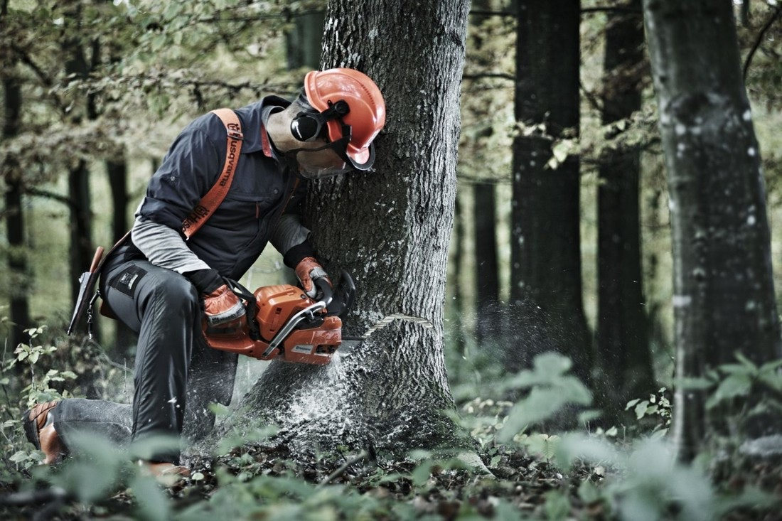 Husqvarna 545FX: kraftvolle Reserven für den Forst!
