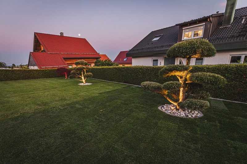 Strahler setzen (farbige) Akzente auf die Zierbäume im Garten