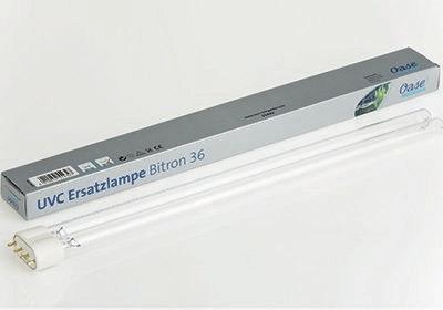 UVC Ersatzlampe Bitron 36