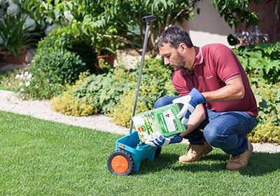 Ab ins Grüne - Tipps für einen schönen Rasen