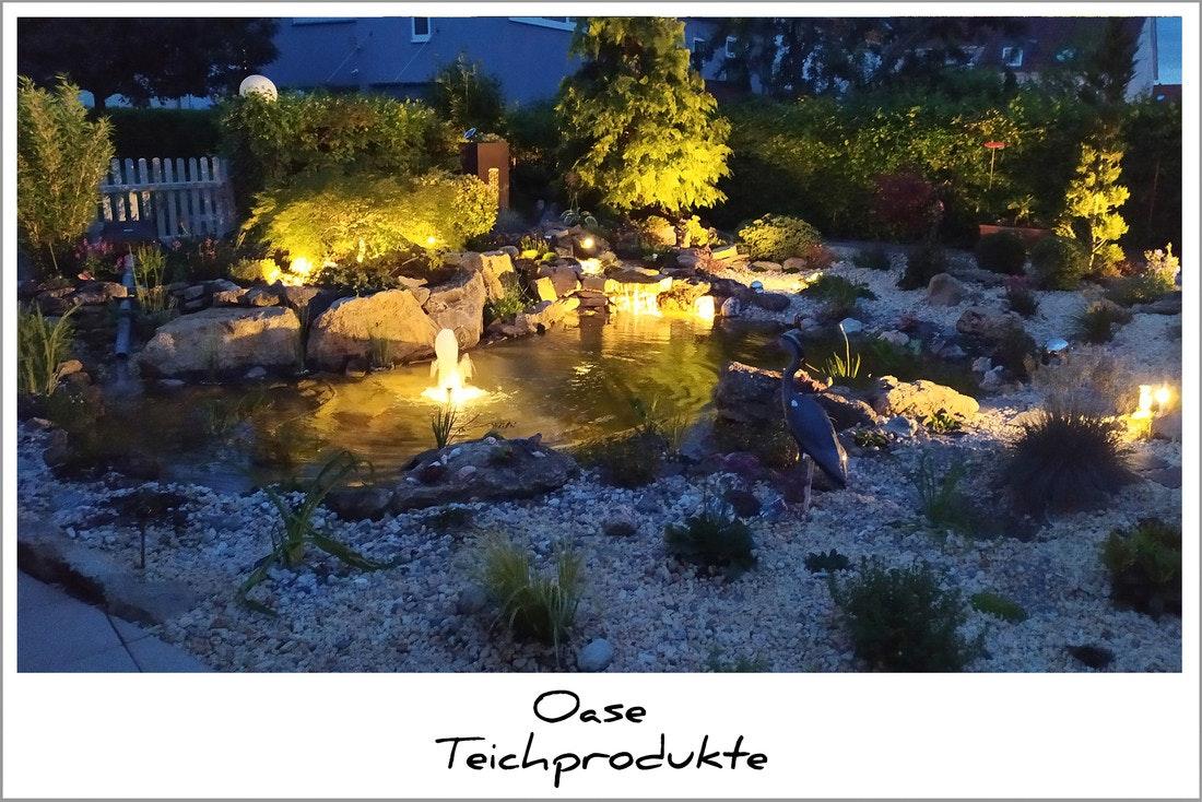 Oase Teichbeleuchtung: stimmungsvoll bei Nacht