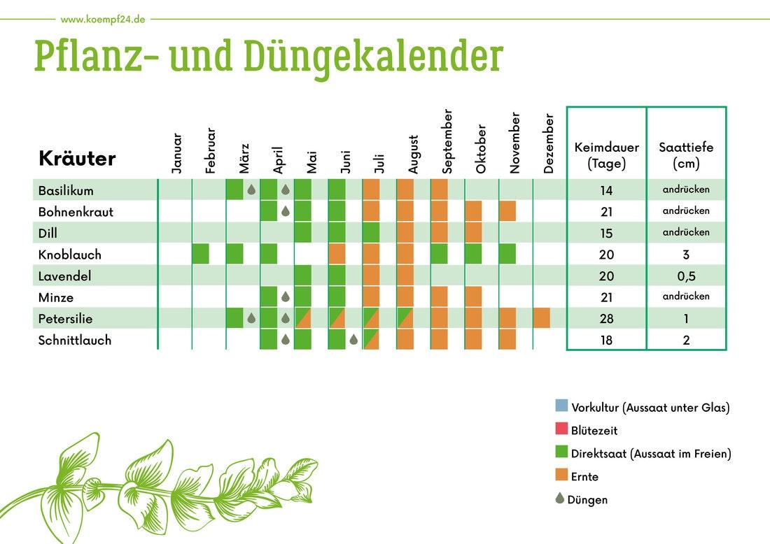 Pflanz- und Düngekalender für Kräuter