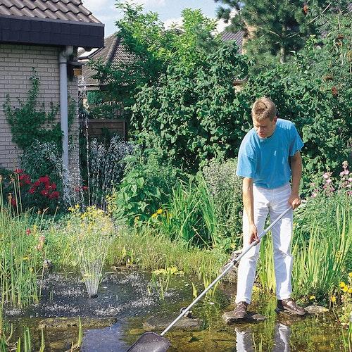 Worauf Sie bei der Teichpflege achten sollten