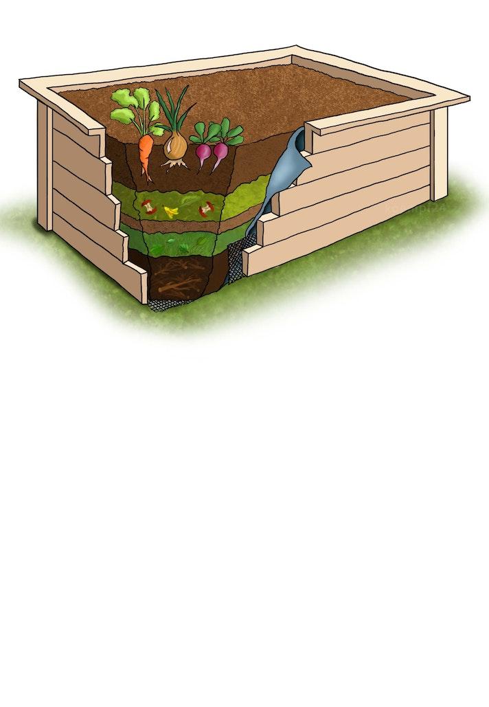 Gemüse selbst anbauen: im eigenen Hochbeet