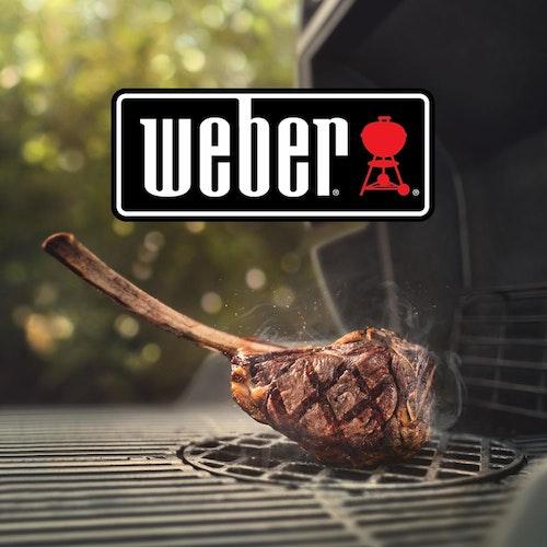 Weber Grills bei grills.de