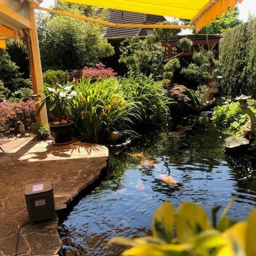 Schön in den Garten integrierter Koiteich