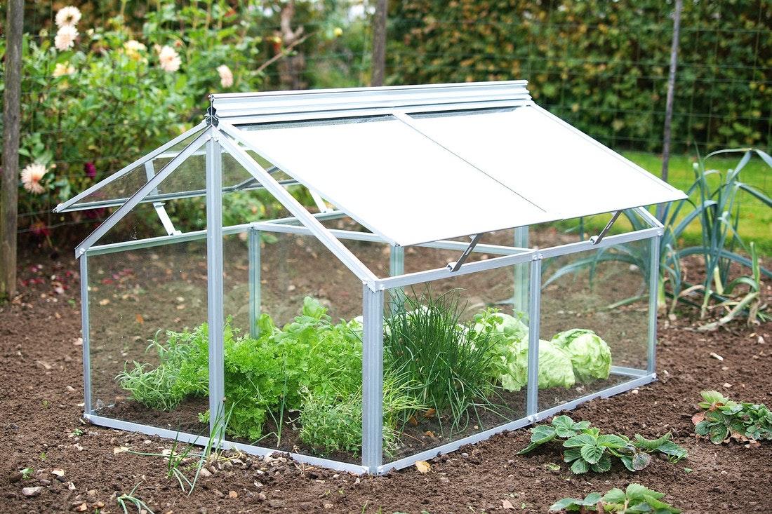 Ein frühbeet ist ein kleines Treibhaus zur Jungpflanzenanzucht