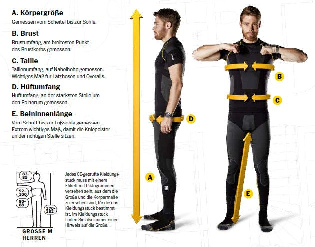 Körperbau Herren Schaubild